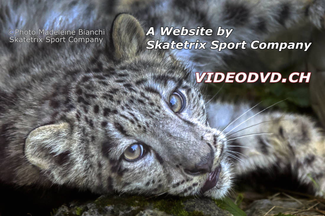 I'm the little SNOW LEOPARD MOHAN! The cute little Speaker of VIDEODVD.CH! You are all very welcome here in VIDEODVD site!